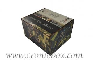 Packaging 6 bottiglie vino decorato