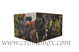 Packaging 6 bottiglie vino Savelli