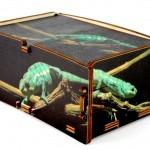 Personalizzazione scatole in legno Cromobox