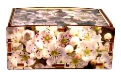 Cromobox scatole per arredamento