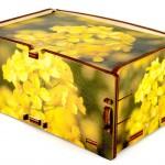 Cromobox scatole per arredare casa