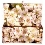 Fotografia stampata su scatola in legno Cromobox