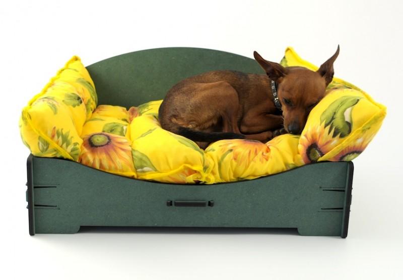 cucce per cani colorate ed originali
